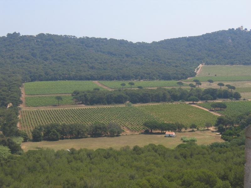 2005_06_Porquerolles_27.jpg